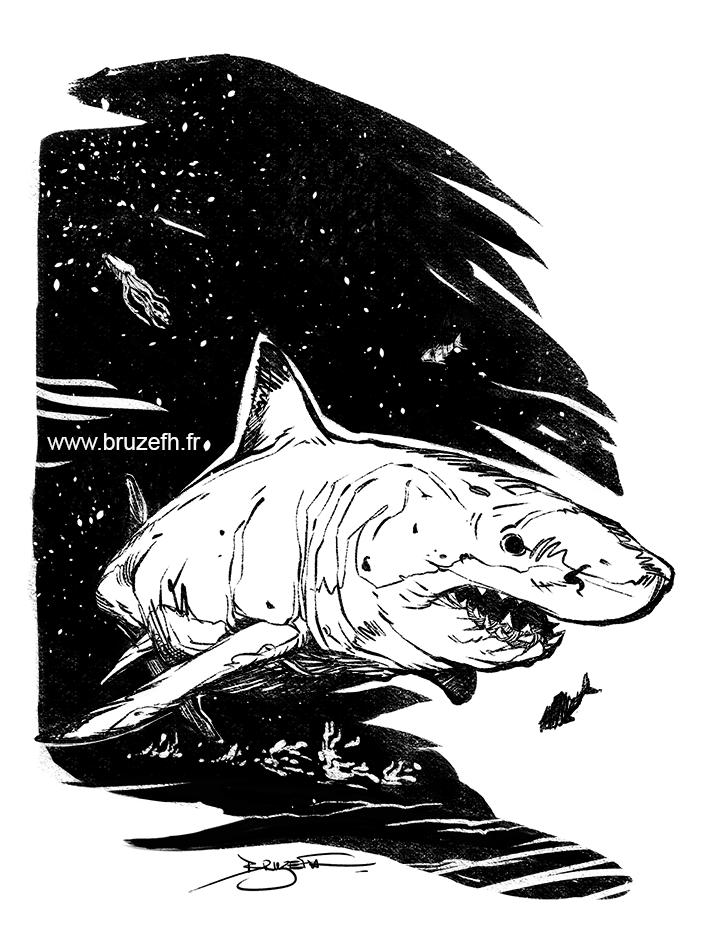 Requin, pa Bruzefh