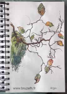 Croquis automne 1, Bruzefh
