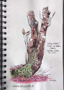 Croquis automne 2, Bruzefh